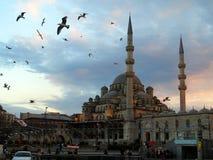 Istambul moskéSokollu Mehmet Pasha Camii yttersida Arkivbilder