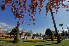 Istambul, Sultan Ahmet/Turquia 19 04 2019: Tempo de mola em Sultan Ahmet Square, destino fotos de stock