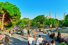 ISTAMBUL, TURKEY-MAY 07, 2016: Piękny krajobrazowy miastowy widok, ci Fotografia Stock