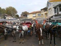 ISTAMBUL, TURQUIA - 20 de outubro de 2018 - cavalo amarrado a um carro na princesa Island Buyukada fotografia de stock