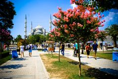 Istambul Stock Photography