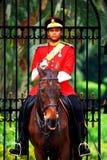 Istana Negara royalty-vrije stock afbeelding