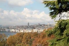 Istanboel door pijnbomen en bomen wordt behandeld die Royalty-vrije Stock Afbeelding