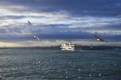Istanbuł seagulls i promy Fotografia Royalty Free