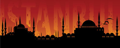 Istanbul. Cityscape of Istanbul isolated on a sunset Royalty Free Stock Photo