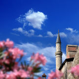 Istanbul Aya Sofia. Detail shot from Aya Sofia Mosque in istanbul, Turkey royalty free stock photography