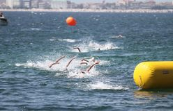 Istanbul Beylikduzu ETU Triathlon European Cup 2017 Royalty Free Stock Image