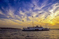 Istanbul Bosphorus evening, sunset ferry and seagulls. Sea of Marmara, the Bosphorus in the evening. sunset ferry and seagulls Stock Images