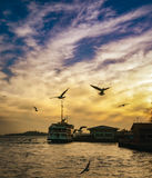 Istanbul Bosphorus evening, sunset seagulls and people Royalty Free Stock Photography