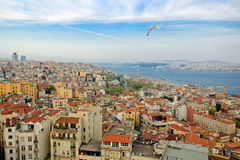 Istanbul and Bosphorus strait Royalty Free Stock Images
