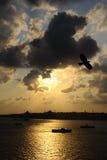 Istanbul Bosphorus und Schiff auf Sonnenunterganghintergrund Lizenzfreies Stockbild