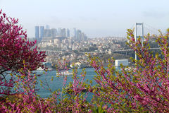 Istanbul and Bosporus Bridge View. Behind the Colors Royalty Free Stock Photography