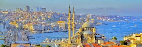 Istanbul, Bosporus und die Moschee stockfotos