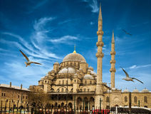 Istanbul the capital of Turkey Royalty Free Stock Photos