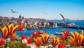 Istanbul the capital of Turkey Stock Image