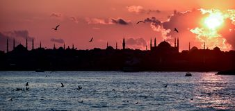 Istanbul city metropolitan islamic place royalty free stock photography