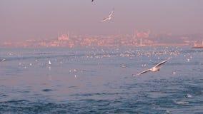 Istanbul die Türkei Stockbilder