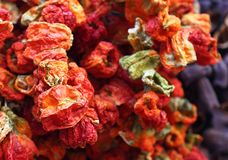 Istanbul dry red peppers Stock Photo