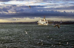 Istanbul ferries and seagulls Stock Images