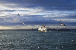Istanbul ferries and seagulls Royalty Free Stock Photography