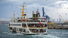 Istanbul ferry. Surrounded by seagulls Stock Image