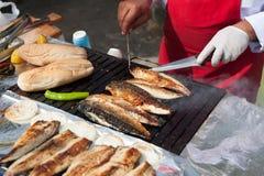 Istanbul fiskmarknad Royaltyfria Foton