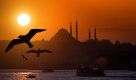 Istanbul Iconic View Royalty Free Stock Photos