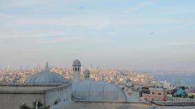 Istanbul istanbul, kalkon, lopp, arkitektur, bosphorus, moské, asia, turk, stock video