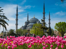 Istanbul la capitale de la Turquie photographie stock