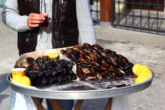 Istanbul Mussels. Istanbul street food, fresh raw mussels Royalty Free Stock Images