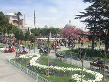 Istanbul på våren Arkivfoton