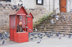 Istanbul. Sales of feed for pigeons Royalty Free Stock Photos