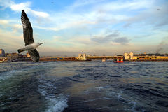Free Istanbul Sea Front View, Bosporus, Turkey. Royalty Free Stock Photography - 42607597