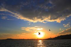 Istanbul, Silhouette Royalty Free Stock Photos