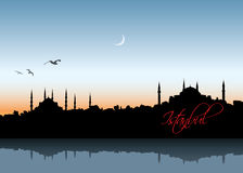 Istanbul skyline Royalty Free Stock Images