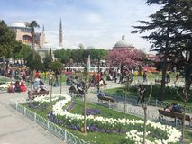 Istanbul at Spring Stock Photos