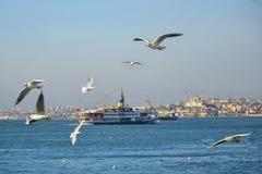Istanbul-Straße, die Seefähre und die Sultanahmet-Moschee im Hintergrund Stockfoto