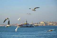 Istanbul strait, the sea ferry and the Sultanahmet mosque in the background.  Stock Photo