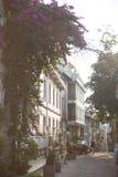 Istanbul street stock image