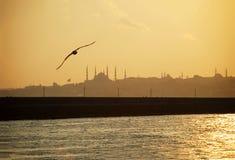 Istanbul sunset. Sarayburnu restrict in Istanbul, Turkey Royalty Free Stock Image