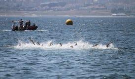 Istanbul Beylikduzu ETU Triathlon European Cup 2017 Royalty Free Stock Images