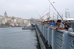 Fishermen fishing in the daytime in the Golden Horn Bay royalty free stock image