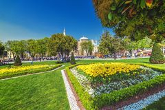 View of Aya Sofia through the Sultanahmet square. ISTANBUL, TURKEY: View of Aya Sofia through the Sultanahmet square during tulips fest on APRIL 12, 2018 royalty free stock image