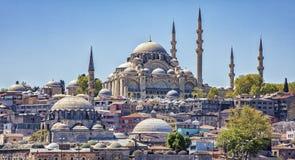 Istanbul Turkiet/April 16, 2016 - blåttmoskén förbiser staden royaltyfri bild