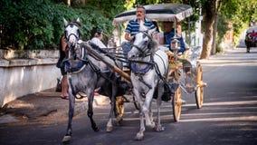 Istanbul, Turquie - 10 août 2013 : Chariots de cheval de prince Islands à Istanbul, Turquie image stock
