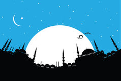 Istanbul. Vector illustration of the cityscape of Istanbul Stock Image