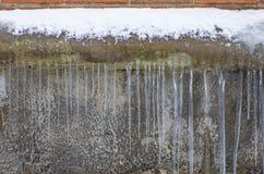 Istappar som hänger mot en bakgrund av väggen Fotografering för Bildbyråer