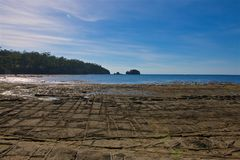 Tessellated Pavement Eagle Hawk Neck. The isthmus connecting the Tasman peninsula to Tasmania is covered in a pattern of regular rectangular saltwater pools Royalty Free Stock Image