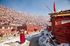 Istituto universitario buddhish di Seda Immagini Stock Libere da Diritti