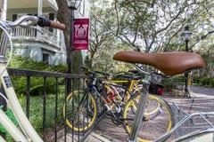 Istituto universitario di Charleston Fotografia Stock